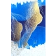 Akty v modrom