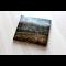Podpísané CD - Bloom - Let the good days come