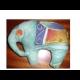 Markova rehabilitácia,sloník veľký oko oranžové