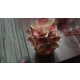 Papierová ozdoba v keramickom kvetináči