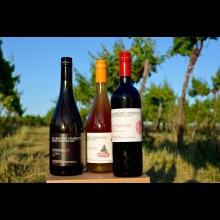 Kolekcia vín zo Slobodného vinárstva