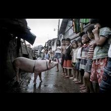 Alan Hyža: Filipíny