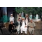 Andrej Bán: Mazar e Sarif, Afganistan 2009