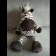Zebra Nicci