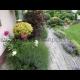 Trojhodinové poradenské služby v oblasti záhradníctva v Devínskej Novej Vsi