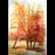 Dražba Aquarelu - Jeseň